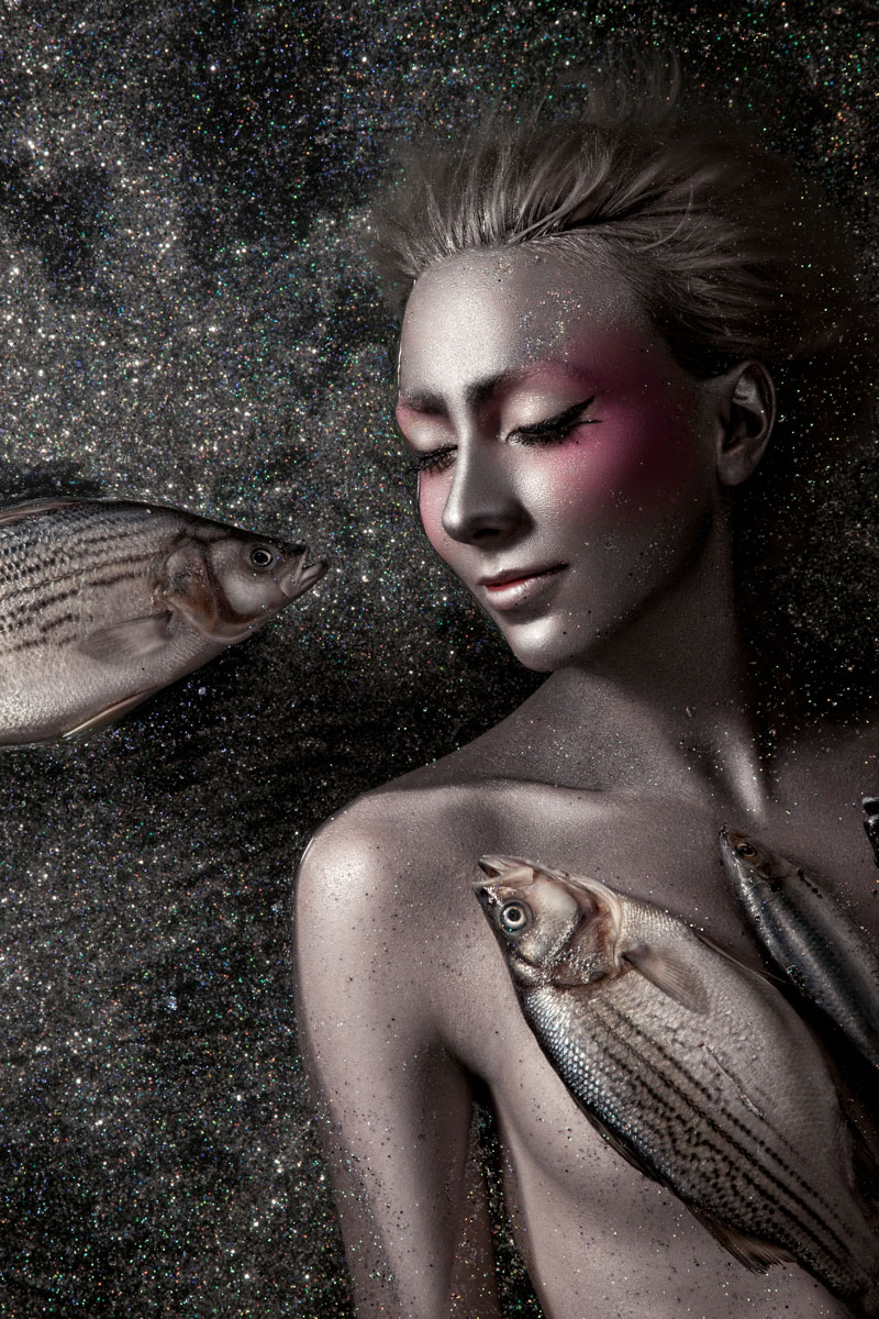 Kitfox Valentín : Beauty dreaming with dead fish